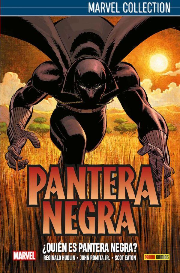 PANTERA NEGRA DE HUDLIN 01: ¿QUIÉN ES PANTERA NEGRA?